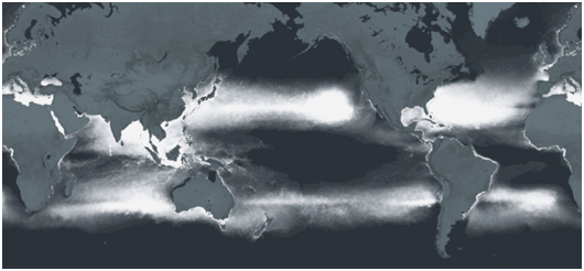Map of 5.25 trillion particles in the world's oceans.  Photo courtesy of Laurent Lebreton.